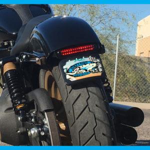 Harley The Horrid Dyna Eliminator 2006 to 2017 | Dirty Bird